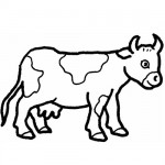Baby cow coloring page