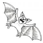 Bat coloring sheet