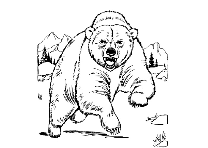 Coloring Grizzly Bear Free Coloring