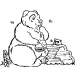 Honey bear bear coloring page