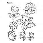 Flowers coloring sheets