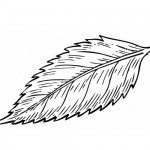 Leave coloring page