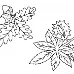 Rainforest leaves coloring page